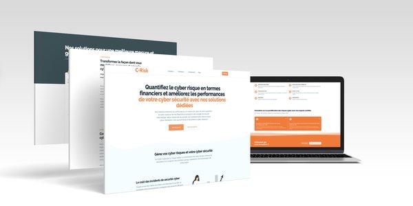 new-c-risk-website.jpg